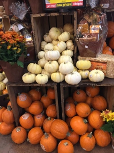 What grocery store is complete without it's autumn display? Even if it is 80 degrees outside. ;)